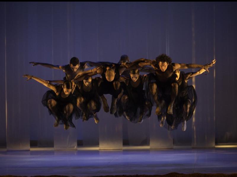 TERRENAL. LAMOV Compañía de Danza